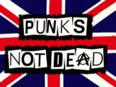 Наиболее известные жанры панк-рока: хардкор-панк, арт-панк, фолк-рок, поп-панк, хоррор-панк, ска-панк, постпанк, чикано-панк, панк-блюз, кельтик-панк, кантри-панк, синтипанк .