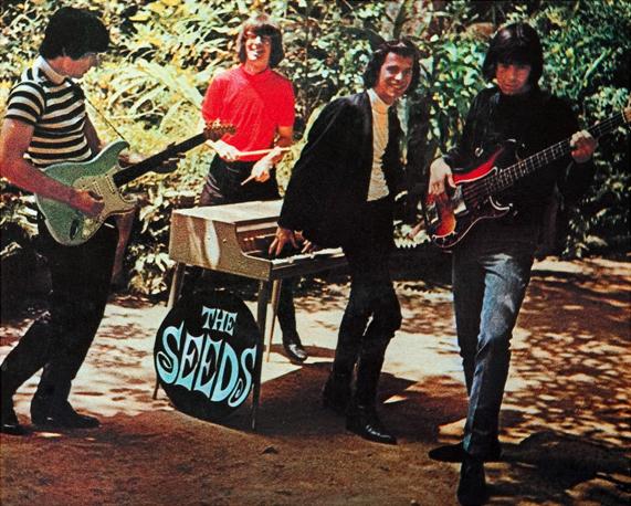 The Seeds – рок-группа из США, образована в 1967 году